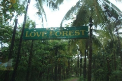 love-forest-goa